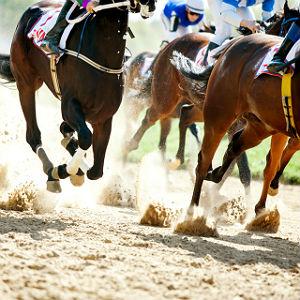 Horseracing-300