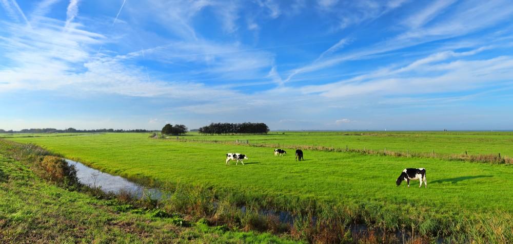 Landbouw grondhandel Nederland