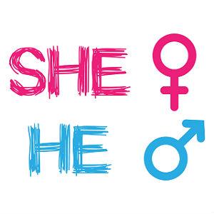 She-he-300